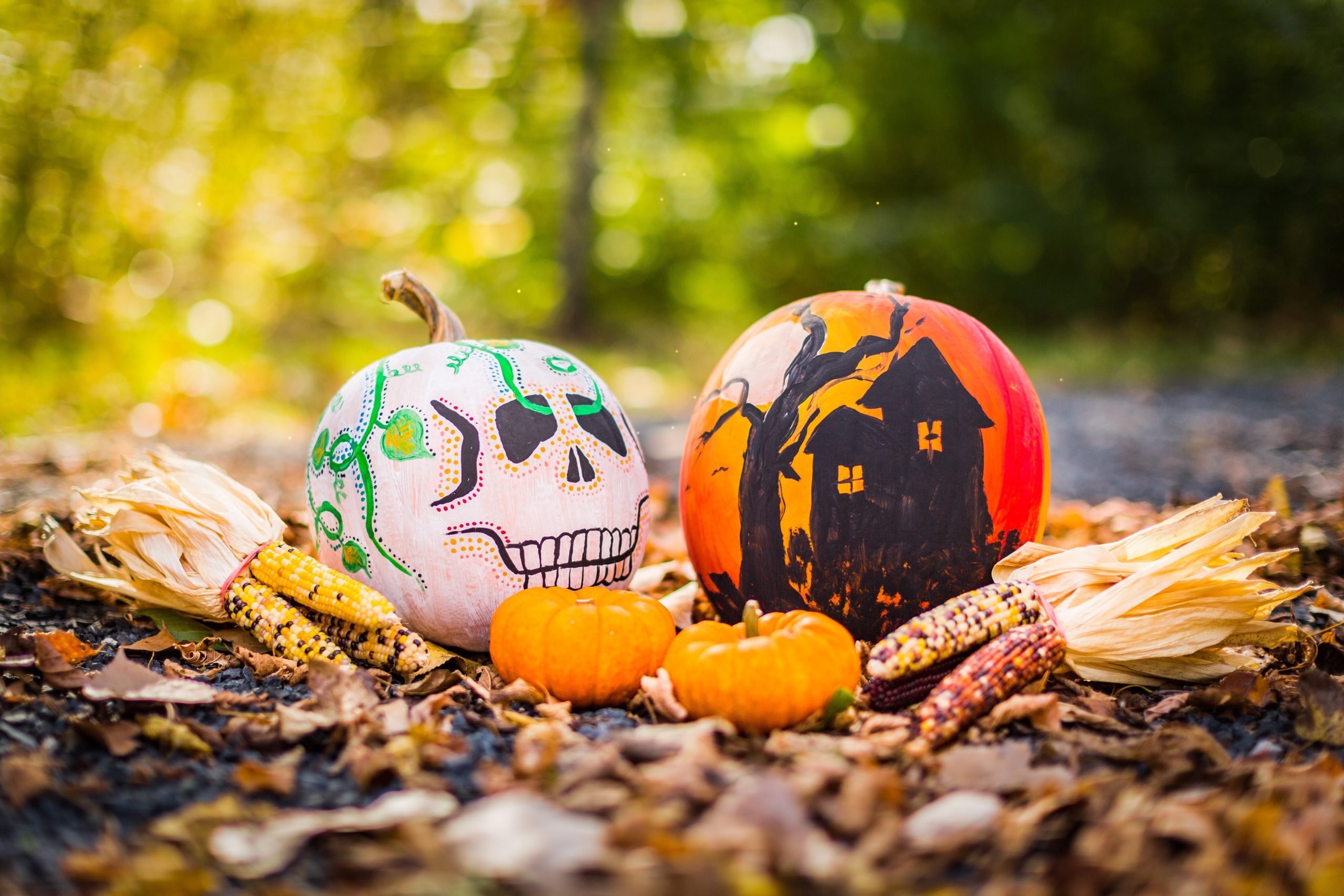 jack o lantern halloween decoration citrouille
